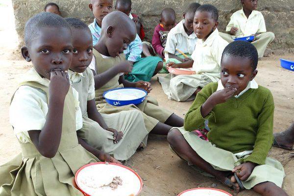 Rapport från skolprojektet i Jimba